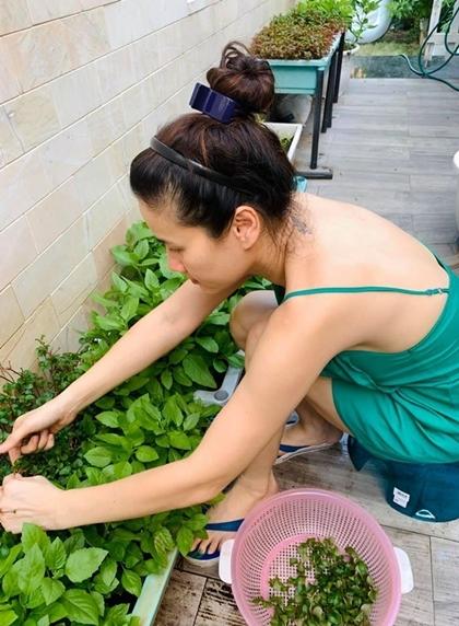 Diễn viên hạn chế thịt, tăng cường rau xanh để có sức khỏe tốt.