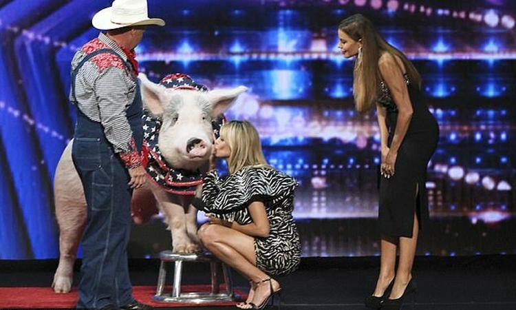 Heidi Klum thơm má con lợn mẹ của đoàn xiếc Pork Chop Revue. Ảnh: NBC.