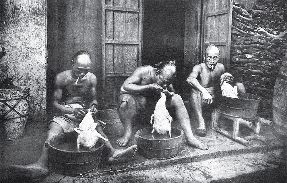 Nhóm người gốc Hoa làm thịt vịt ở Chợ Lớn, Sài Gòn.