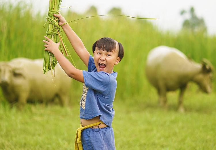 Trạng Tí  - tác phẩm nhiều nụ cười, nước mắt của Ngô Thanh Vân
