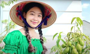 Con gái Quyền Linh thu hoạch trái cây trên sân thượng