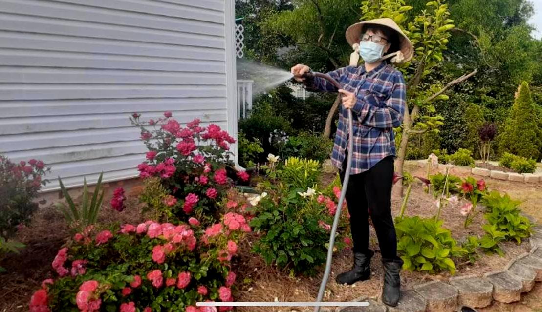 Phương Hồng Thủy tưới vườn hoa hàng ngày. Ảnh: Facebook Phương Hồng Thủy.