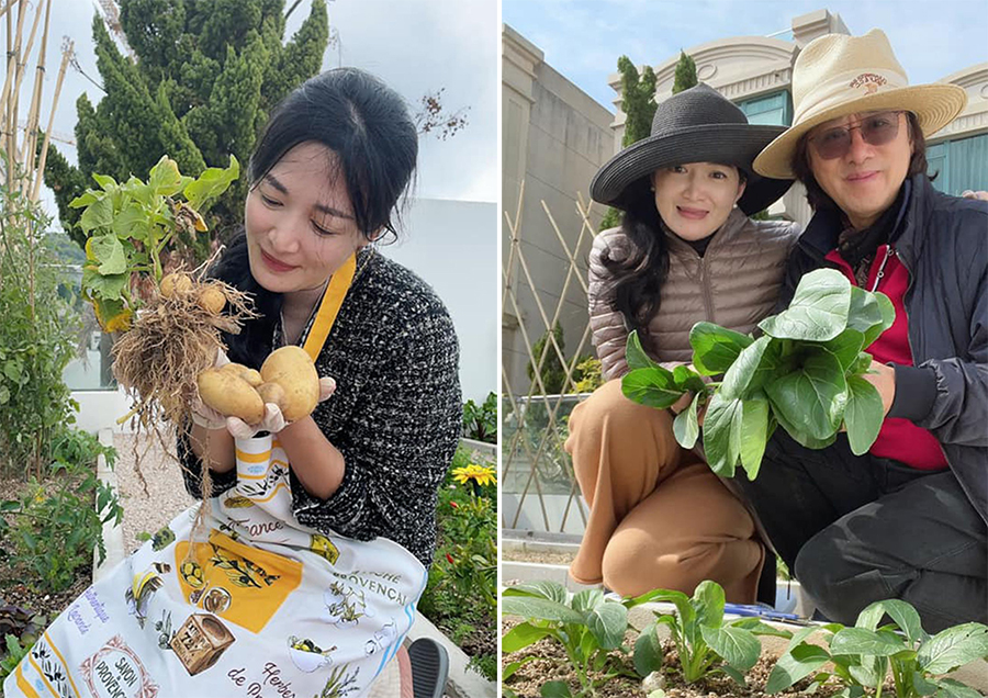 Husband and wife grow vegetables in the garden.  Businessman Ly Van Huy is 20 years older than his wife.  Photo: HK01